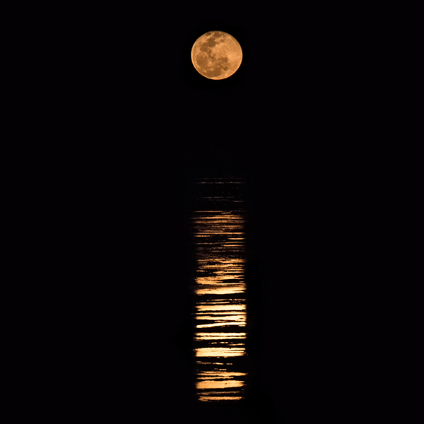 A highlight of visiting Broome is witnessing the staircase to the moon rising over Roebuck Bay.